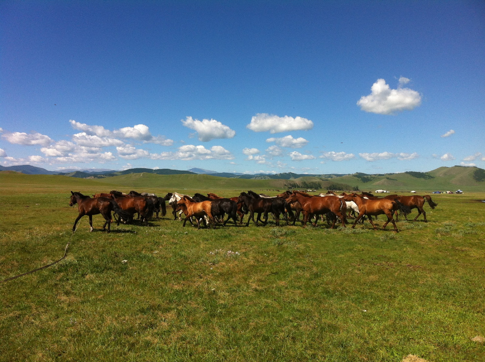 MONGOLIA—LAND OF FREEDOM